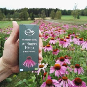Frantsila echinacea product and flowers in the background.