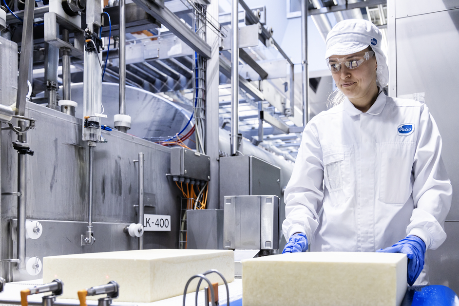 An employee of the Valio's factory handles cheese.