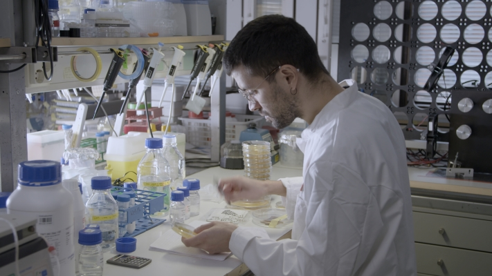 Man in a white jacket sitting in a laboratory studying a Petri dish.